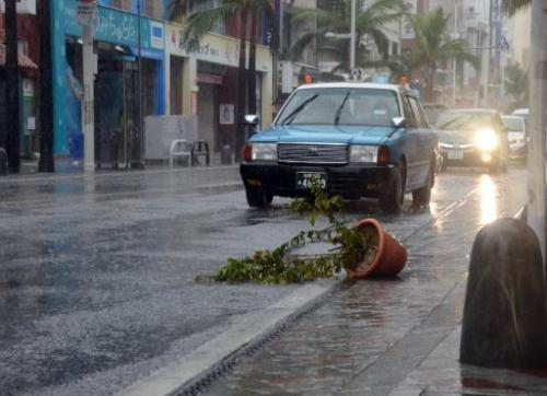 Cars drive past a potted plant, blown onto the road by strong wind caused by Typhoon Vongfong, in Naha, Japan's southern island