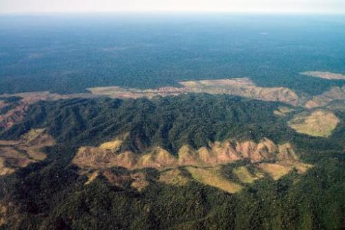 Deforestation next to Indio's reservation area in Para state, northern Brazil, on August 9, 2013