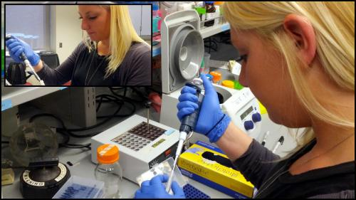 Human heart beats using nearly billion-year-old molecular mechanism