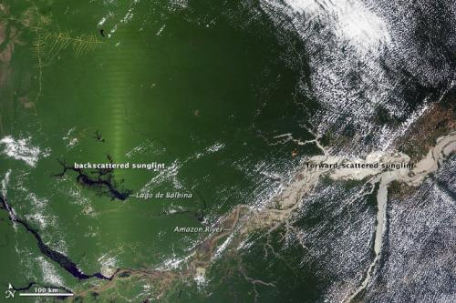 NASA study points to infrared-herring in apparent Amazon green-up
