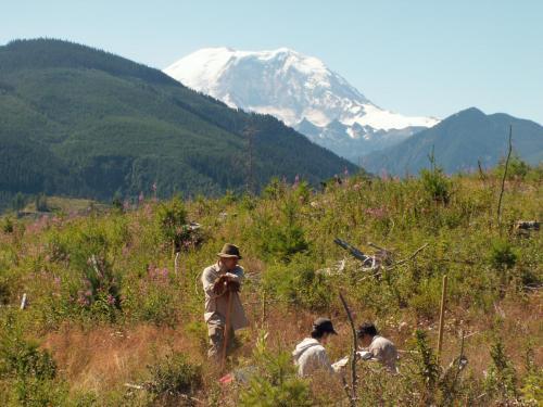 New view of Rainier's volcanic plumbing