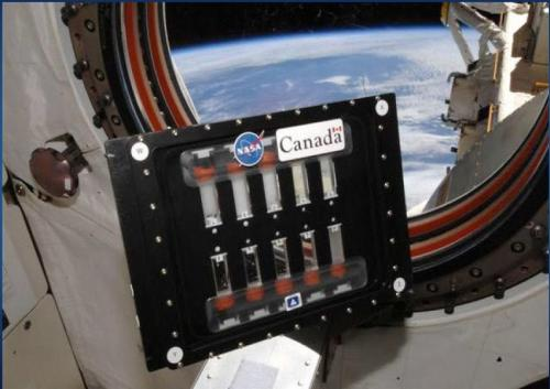 Rounding up the BCATs on the Space Station