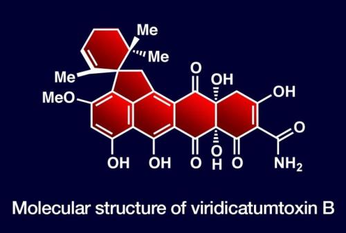 Synthesis produces new antibiotic