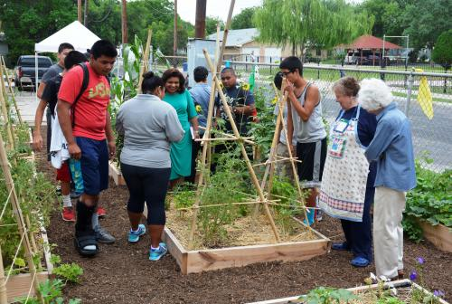 Urban food desert pilot project an 'oasis' for at-risk youth