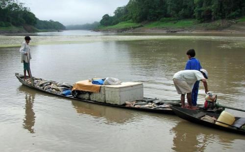 Extreme weather events provide window for scientists studying Amazon climate change