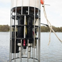 Phytoplankton use turbulence to survive