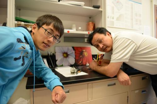 Stanford scientists develop a water splitter that runs on an ordinary AAA battery