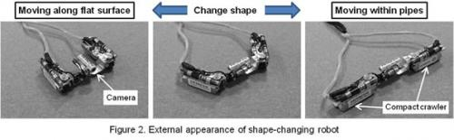 Submersible and shape-changing robots developed for Fukushima inspection