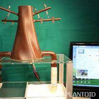 Building a robot to mimic plants
