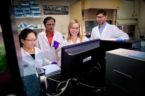 Breakthrough understanding of biomolecules could lead to new and better drugs