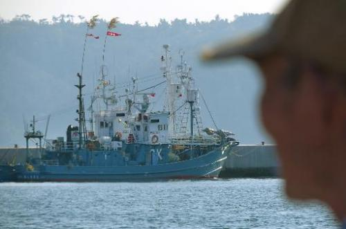 Japanese whaling ships are anchored at Ayukawa port in Ishinomaki, on April 25, 2014