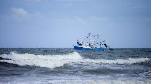 Over-demanding market affects fisheries more than climate change