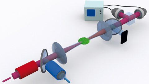 Scientists demonstrate switching effects caused by single photons