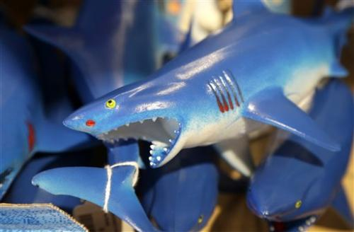 Shark sightings off US state a boon for tourism (Update)
