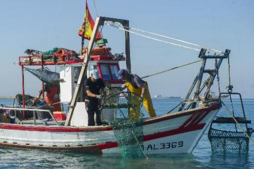 This photo taken on August 16, 2013 shows fishermen fish with dredge nets far from an area where Gibraltar dropped the now parti