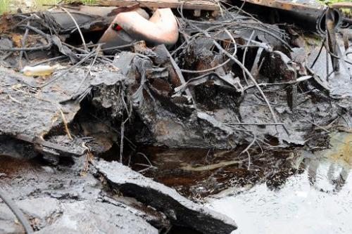 A bank of the Bodo waterway is polluted by spilled crude oil allegedly caused by Shell equipment failure in Ogoniland, Nigeria A
