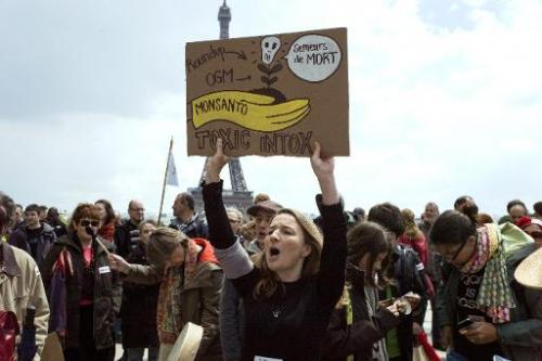 Activists gather on the Trocadero square near the Eiffel tower during a demonstration against GMOs and Monsanto on May 25, 2013