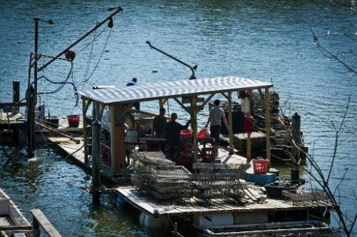A floating platform used for cleaning and sorting of oysters is seen at Hollywood Oyster farm in the waters of Chesapeake Bay ne