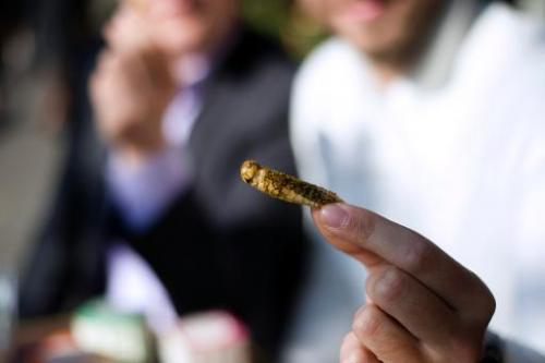 A man holds a cracker made of a locust in Paris on October 7, 2013