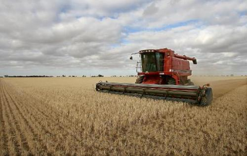 An Australian farmer who lost his organic produce licence has taken his neighbour to court over contamination from his genetical