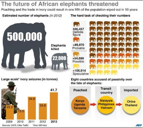 Animal protection groups have warned that as many as 20 percent of Africa's elephants could disappear within a decade if current