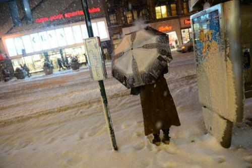 A pedestrian battles snow in New York, January 21, 2014