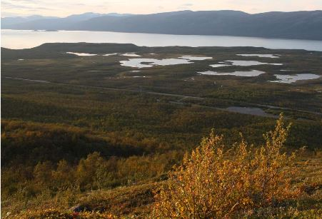 Arctic inland waters emit large amounts of carbon
