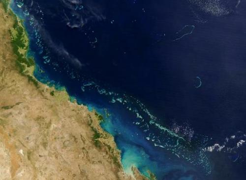 "Australia calles a decision by UNESCO to defer listing the Great Barrier Reef as in danger ""a win for logic"", but envi"