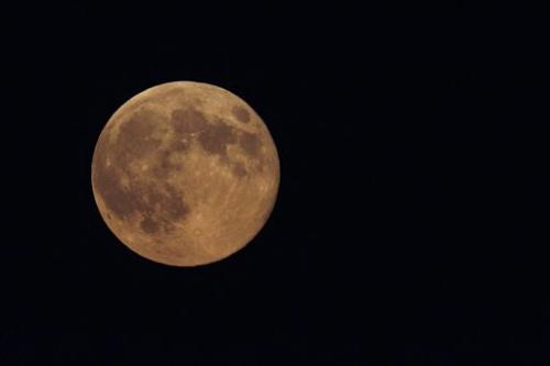 Best-of-summer meteor shower eclipsed by supermoon
