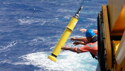 Bio robots make a splash in the Indian Ocean