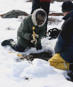 Building materials may impact Arctic tundra