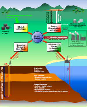 Carbon capture utilization and storage