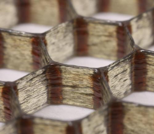 Carbon-fiber epoxy honeycombs mimic the material performance of balsa wood