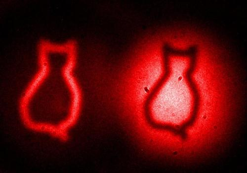 Picturing Schrodinger's cat: Quantum physics enables revolutionary imaging method
