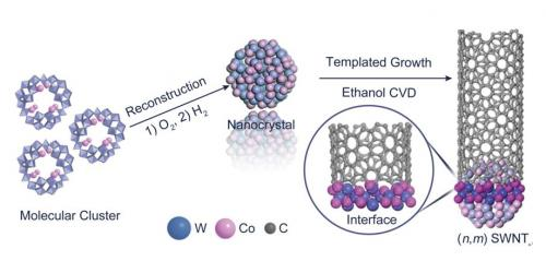 Chirality-controlled growth of single-walled carbon nanotubes