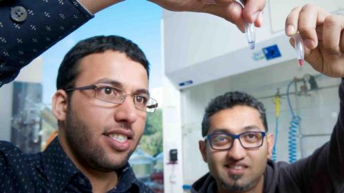 Detecting harmful molecules in the environment
