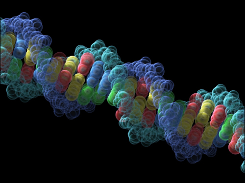 DNA may have had humble beginnings as nutrient carrier