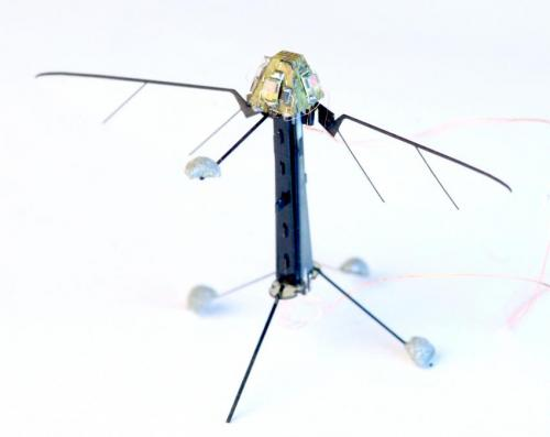 Researchers mimic insect ocelli to build light sensor to control fly-sized drone