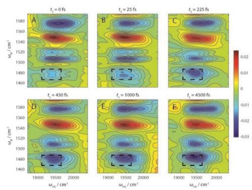 Dynamic spectroscopy duo
