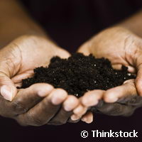 EU-project applies green technologies to decontaminate soil