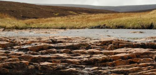 Europe to suffer from more severe and persistent droughts