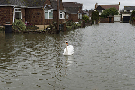 Expert warns householders and businesses need to start work now on long-term flood prevention