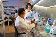 Food science and technology research helps to ensure a safer global food supply