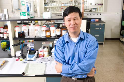 For the first time in the lab, researchers see stem cells take key step toward development