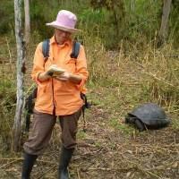 Galapagos invasion is global warning