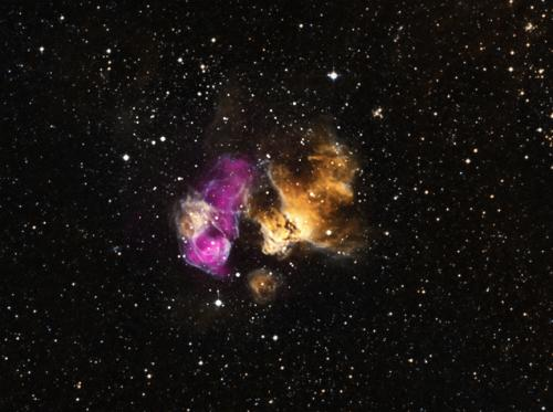 Hardy star survives supernova blast