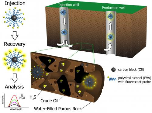 Hydrogen sulfide nanoreporters gather intel on oil before pumping