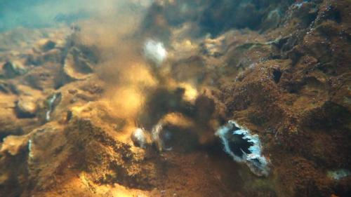 Hydrothermal vents could explain chemical precursors to life