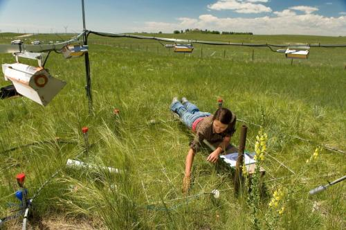 Elevated CO2 further lengthens growing season as climate warms