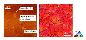 Lateral crystal growth using oxide nanosheets as seed crystals